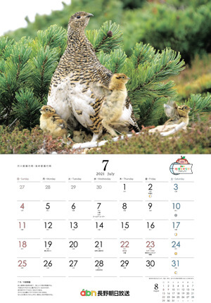 カレンダー「雷鳥の四季 2021」7月