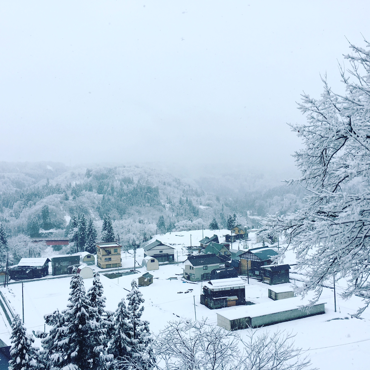 豪雪地の冬の味