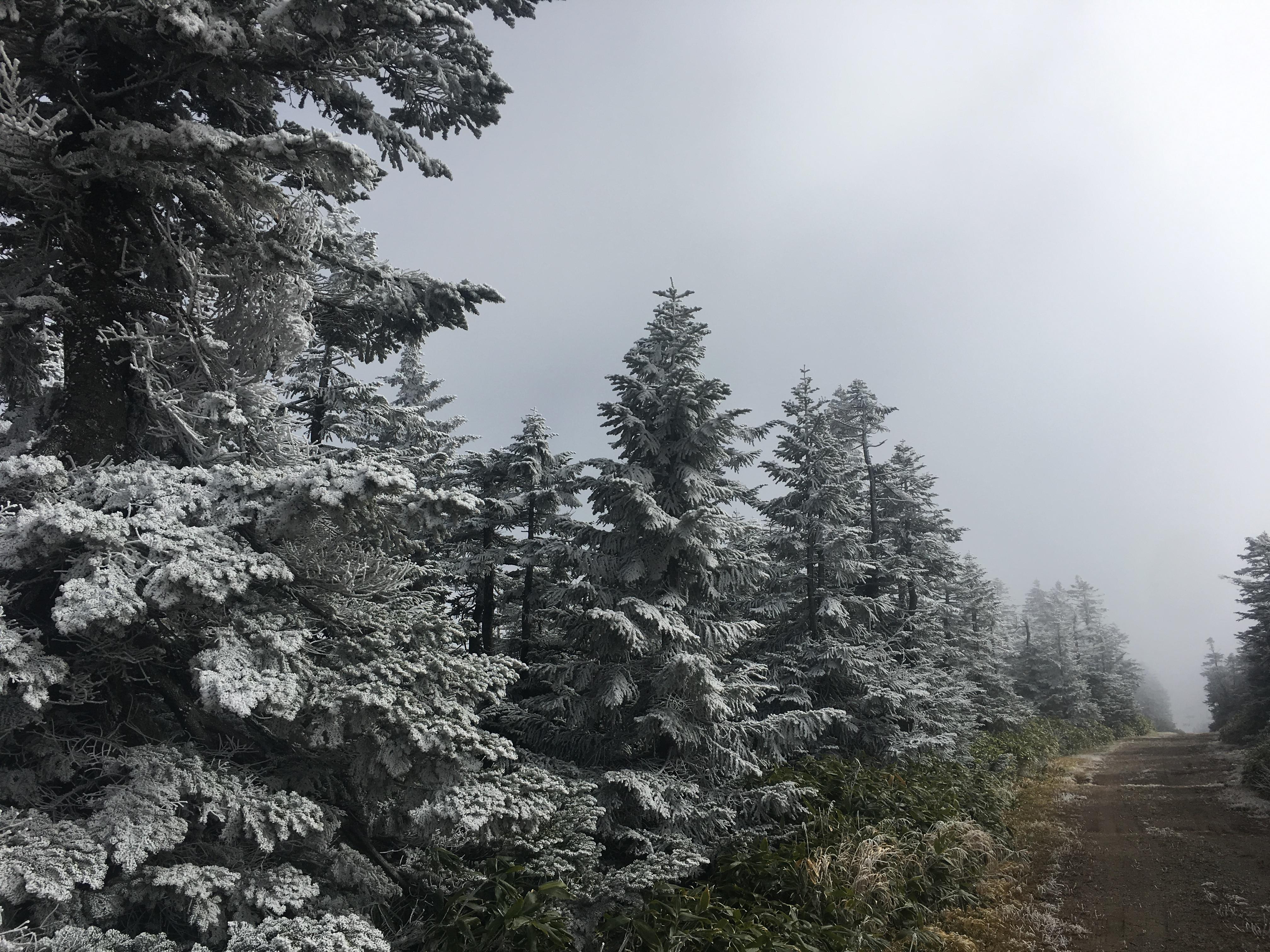 10月ラストに冬景色