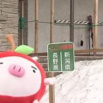 斑尾高原スキー場&斑尾高原ホテル (2016年3月12日)