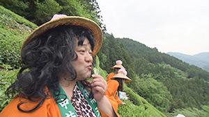 ヤポン原人と行く!南信州 新緑ツアー(駅テレ)| 中井侍お茶摘みツアー