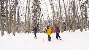 なべくら高原 スノーシュー|信州1年目稲垣アナと行く 北信濃で雪見ツアー
