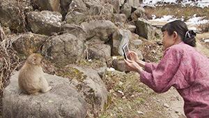 地獄谷温泉 後楽館|逆境を乗り越える新たな挑戦&ヤポンのお祭りカレンダーの旅