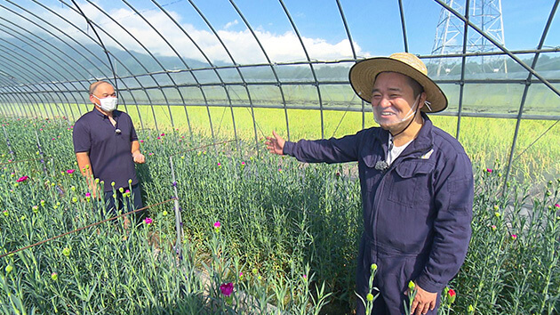 カーネーション農家|#信州花活「ヤポンの花農家探訪」