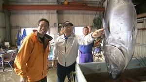 『魚に恋した信州人』 サケ・ブリ・マグロを求めて!現代のサカナ街道8000kmの旅