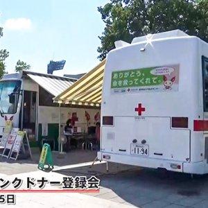 abnステーション がん特集企画「信州の骨髄バンクは今」(2019年9月20日)