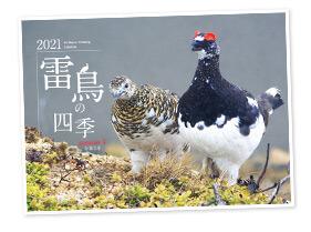 雷鳥カレンダーの販売を通じて、ライチョウ保護を支援