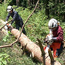 地球を守ろう!プロジェクト 森林を育て、森林と生きる!(8月26日 土曜 午後2時放送)