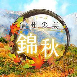 シリーズ 信州の美 錦秋(2019年11月24日 日曜 午前10時)