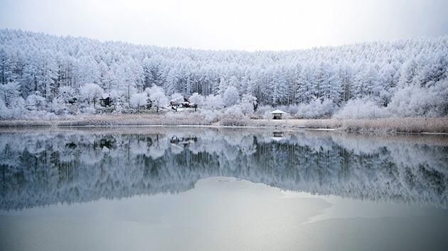 聖高原の樹氷・北アルプス(麻績村)|シリーズ 信州の美 冬の芸術