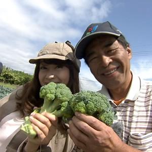 第6回【食材】ブロッコリー 6月25日(土)放送