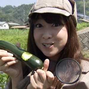第7回【食材】ズッキーニ 7月23日(土)放送