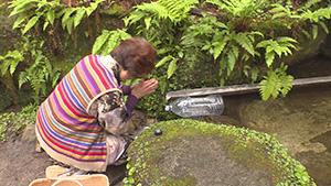 猿庫の泉にまつわるおいしい話(いいね!信州スゴヂカラ)
