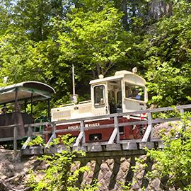 木曽・森の小さな鉄道と巨木たち(7月29日 土曜 午前11時放送)
