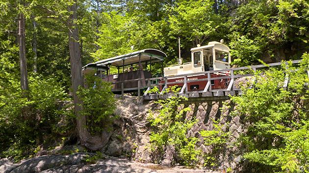 木曽・森の小さな鉄道と巨木たち(いいね!信州スゴヂカラ)| 赤沢森林鉄道