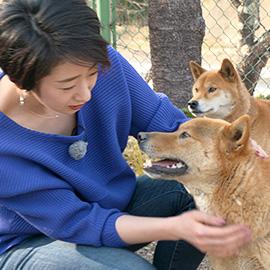 梓山犬を知っていますか?(4月7日 土曜 午前11時)