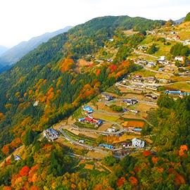 遠山郷 秋の絶景と魅力さがし(11月24日 土曜 午前11時)
