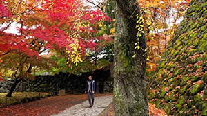 懐古園|晩秋の小諸で紅葉と歴史を訪ねる(いいね!信州スゴヂカラ)