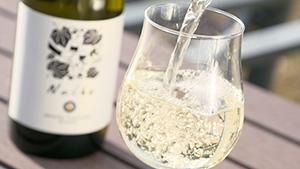 信州たかやまワイナリー|『そばとワインと温泉と』~高山村の大地の恵み~