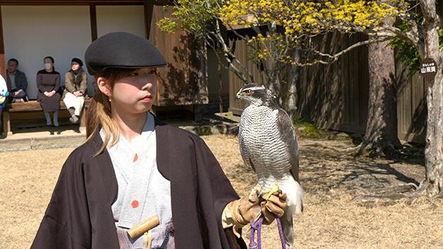 信州の鷹狩りのルーツを探る(4月11日 土曜 午前10時45分)
