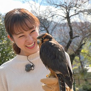信州の鷹狩りのルーツを探る|中野希友未