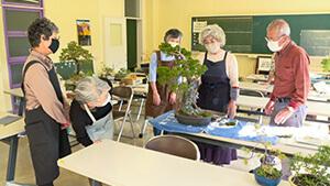盆栽教室|日本で唯一の女性盆栽技能保持者