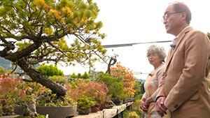須坂市 松山園4代目 山本千城子|日本で唯一の女性盆栽技能保持者