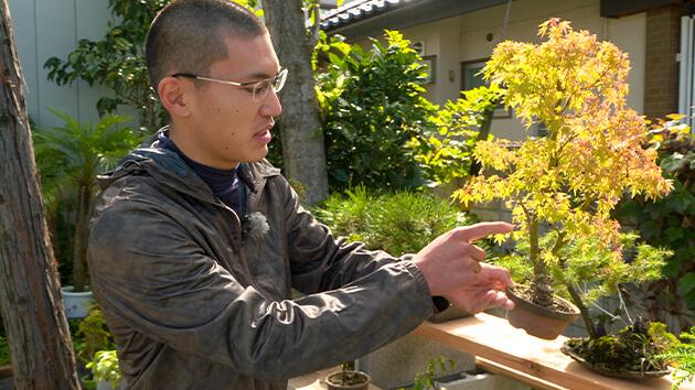 信州大学農学部|日本で唯一の女性盆栽技能保持者