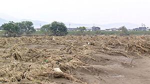 2019年 台風19号被災した畑|長野市松代町のナガイモ