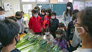 花育・長野市立山王小学校 |日本一だ!信州の花づくり