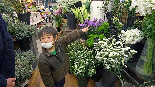 魔法の花瓶・花のサブスクリプション|日本一だ!信州の花づくり