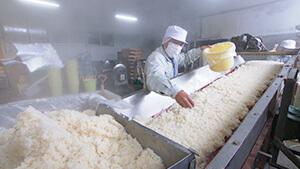 伝統「箱守り糀」(中村醸造場)|スゴイぞ!信州のものづくり