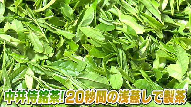 中井侍銘茶!20秒間の浅蒸しで製茶 / 天龍村の中井侍銘茶を探る
