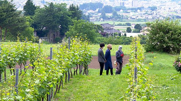 塩尻ワイン 塩尻市の複業マッチングを探る