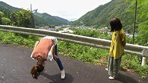 絶景・珍しい富士山|おさんぽ先生 飯田市南信濃で見つけたおもてなしの心