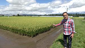 フナ水田養殖|秋の風物詩!佐久市の田ブナを探る