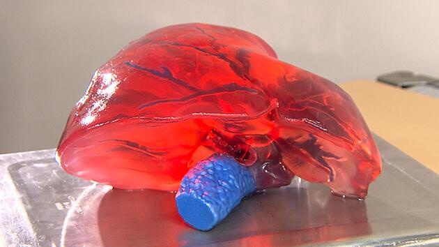 伊那で誕生!世界が注目する臓器モデル(10月23日 土曜 午前10時45分)