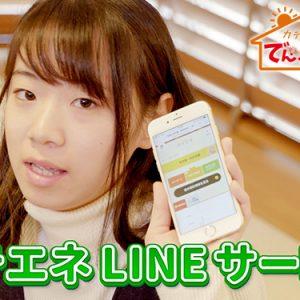 第10話・カテエネのLINEサービス(1月11日 金曜 午後6時55分)
