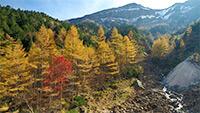 硫黄岳 紅葉