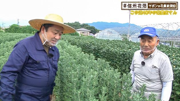 この道40年の菊農家さん・ヤポンの花農家探訪(2020年9月11日 金曜 よる6時55分)
