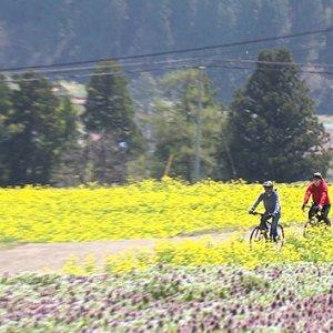 春の北信濃 eバイクでGO!~グルメ&絶景!地域の魅力再発見の旅~(5月1日 土曜 あさ9時30分)