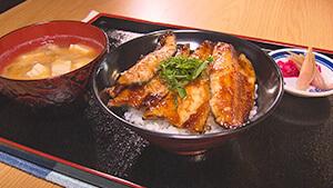 常八 Tsunehachi・ニジマス丼|逆境に負けない!古民家宿からヒノキを発信 秋の風吹く御嶽山の麓を散策
